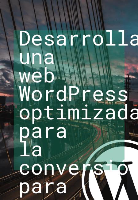 Desarrollando una web WordPress optimizada para la conversión para un servicio del área de IT